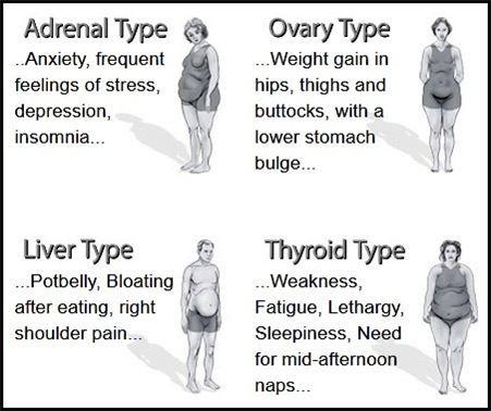 Body Type Chart Dr Eric Berg